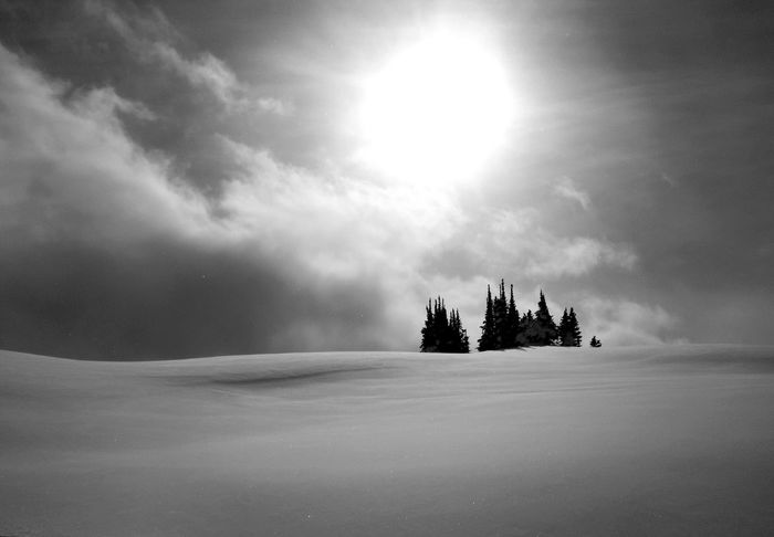 Snow Sports Silhouette Sky Beauty In Nature Landscape Mountain Range Blackandwhite Outdoors Winter Cold Temperature Snow Trees Silhouettes Simplistic The Great Outdoors - 2017 EyeEm Awards