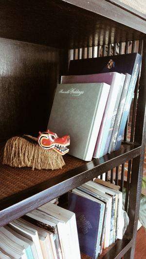 Lion On Bookshelf Bookshelf