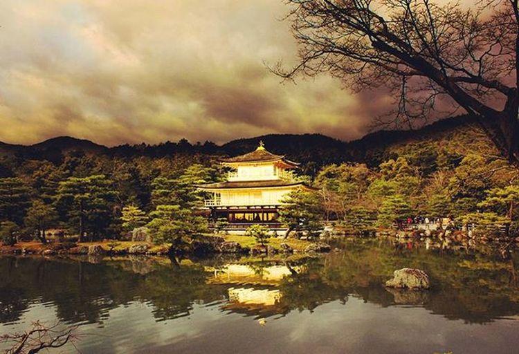 겉은 화려하나, 속을 알 수 없으니 마음이 가질 않네. 금각사 킨카쿠지 金閣寺 きんかくじ 京都 北山 교토 금수각 경도 Kyoto 일본 Japan 건축물 여행 여행스타그램 Travel 일본여행 풍경 Follow4follow Followme 빈카메라 Bincamera