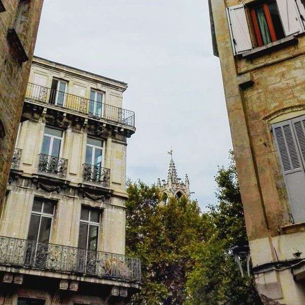 Grisaille Automne🍁🍂🍃 Built Structure Sky No People History Outdoors Day City Avignon City Lifestyle EyeEm Selects Centre Ville EyeEm Best Shots France Architecture Happiness Spleen D'automne Architecture Low Angle View Building Exterior Residential Building Tree