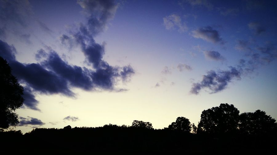 Sunset Landscape Beautufulwiew Silhouette Trees And Sky Smartphonephotography LG G4