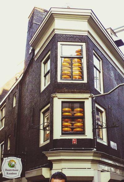 Your Amsterdam Amsterdam Madametussauds Kass Cheese! Cheese