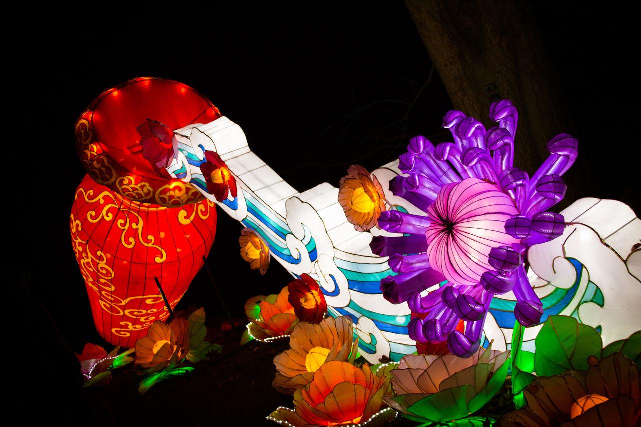 night, flower, no people, illuminated, multi colored, indoors, black background