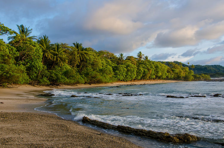 Close to paradise. Tree Water Landscape Cloud - Sky Sky Nature Beach No People Nature Reserve Corcovado Corcovado National Park Costa Rica Nature Nature Photography Wallpaper Palm Tree Sunset Sundown Palmtree Palmtrees Walk Paradise Paradise Beach Paradise On Earth Alone