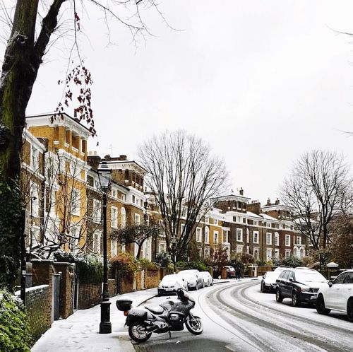 London White Winter Vibes London Life London Vibes City Of London Londoner England London, UK🇬🇧 Camden Town Bare Tree Car Snow Winter Cold Temperature Land Vehicle Transportation