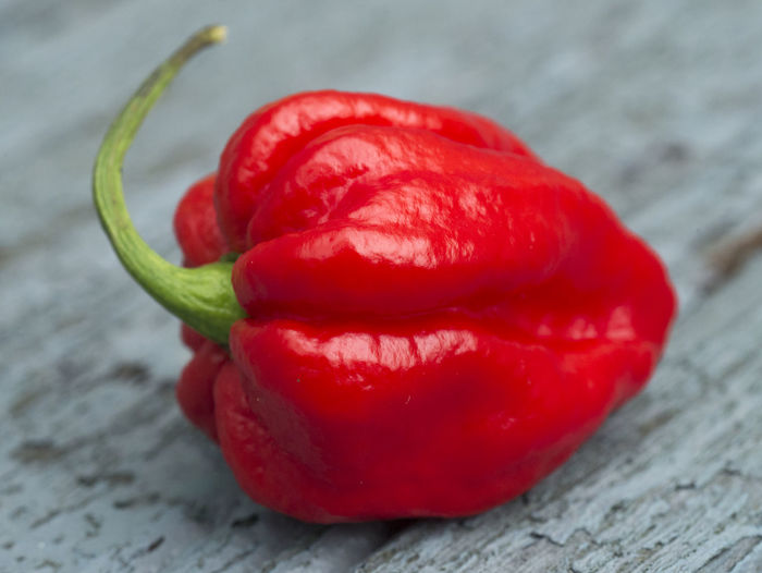 Carolina Reaper or HP22B Cilli Pepper is the world's hottest pepper. Carolina Chilli Chilly Food Freshness Habanero Hanging Out Hello World Hot Hp22b Jalapeno Mexican Nature Nobody People Plant Reaper Relaxing Spice Spicy Vegatable Wood