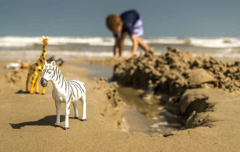Boy Playing With Toys At Beach
