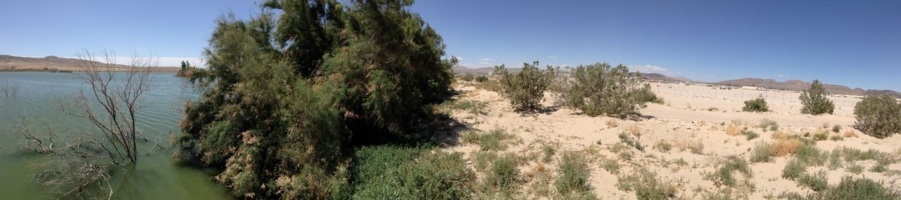 Beautiful Beauty In Nature California Day Desert Green Lake Nature Oasis Opposites Panorama Panoramic Panoramic Photography Remote Sand Scenics Tranquil Scene Unreal Unrealistic Water Water Meets Desert
