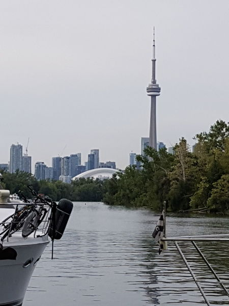 Toronto Toronto Islands City View  CN Tower Rogers Centre Boat Marine Marine Life Bicycles No People Outdoor Activity Breathing Space