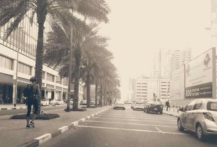 Dubai Business District Pedestrians Street Photography Vehicles Traffic Avenue Boulevard
