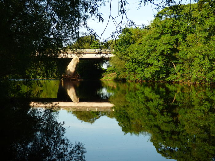 Tees Bridge reflection Reflection Water Tree Lake Nature Outdoors No People Day Beauty In Nature Architecture Sky Popular Photos Scenics Low Angle View Photography Popular Tranquility Beauty In Nature Art Photography Reflection Architecture