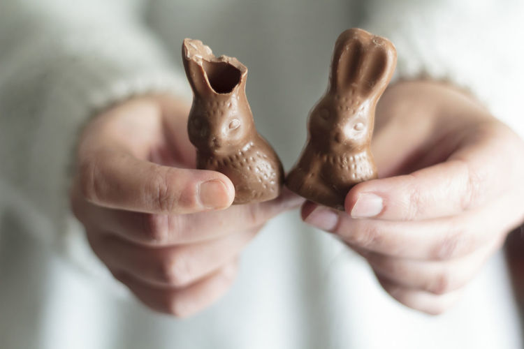 Close-up of woman hands holding chocolate easter bunny
