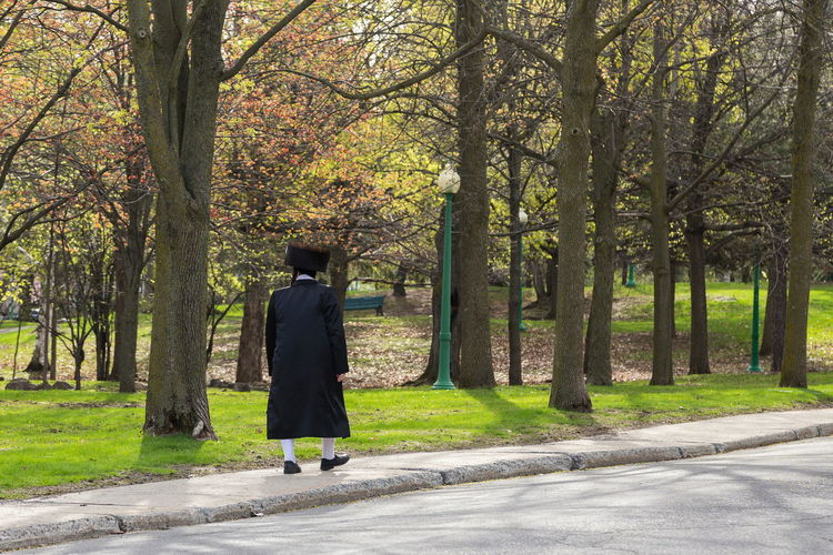 Orthodox Hasidic Jew man wearing the traditional fur hat and black coat walking along a park Outdoors Treelined Adult Walking Rear View One Person Orthodox Hasidic Jew Man Unrecognizable Person Shtreimel Traditional Clothing Fur Hat Black Coat Bulky White Stockings Strolling Sidewalk Park Sunny Tight Knit Community Orthodox Jewish