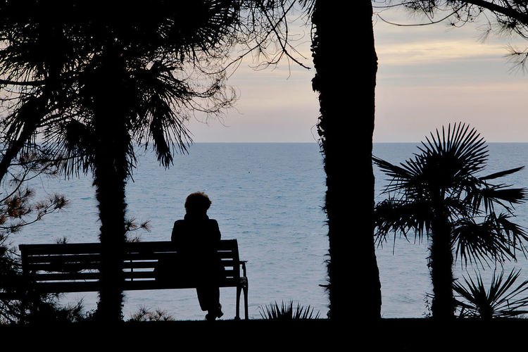 lonliness Lonliness Sochi Russia Woman Adult Old Women Old Day Outdoor Outdoor Photography Streetphotography Street Photography Streetphoto Sitting Tree Water Sea Full Length Silhouette Beach Palm Tree Standing Sky Horizon Over Water Sunset Evening Scenics Stories From The City Adventures In The City The Street Photographer - 2018 EyeEm Awards The Great Outdoors - 2018 EyeEm Awards International Women's Day 2019