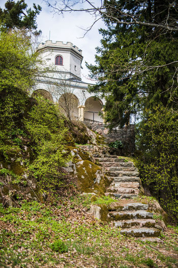 Akseli Gallen-Kallela's house and museum Akseli Gallen-Kallela Arch Architecture Building Exterior Built Structure Castle-like Day Forest Growth House Mansion Museum Nature No People Outdoors Plant Residence Residential Building Sky Steps Tree