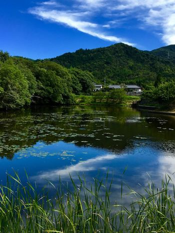 Subject : A Tranquil Pond in the Countryside. Beauty In Nature Nature Pond Reflection Tranquility Water Mountain Sky Scenics Outdoors No People Day Green Color Cloud - Sky Tree Grass Lotus Growth Mountain Range . Taken at Kurose in Higashi-Hiroshima , Japan on Aug. 13, 2017 ( Submitted on Aug. 21, 2017 )