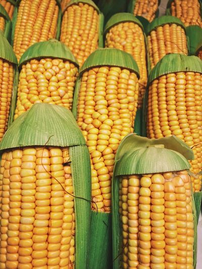 Corncobs in a street market Street Market Corncob Food And Drink Food Corn Vegetable Healthy Eating No People Green Color Corn On The Cob Full Frame Backgrounds Sweetcorn Yellow Close-up For Sale Still Life Market