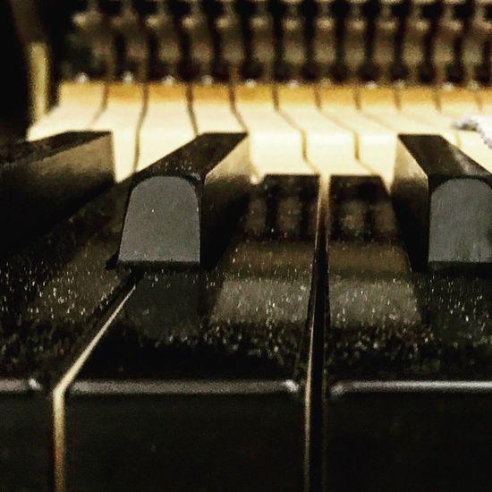 Keyboard Bösendorfer IPhoneography IPhone7Plus Ebony Ebony And Ivory