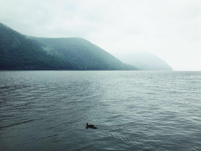 Original Experiences Cold Spring New York Catskill Mountains Fog Storm King
