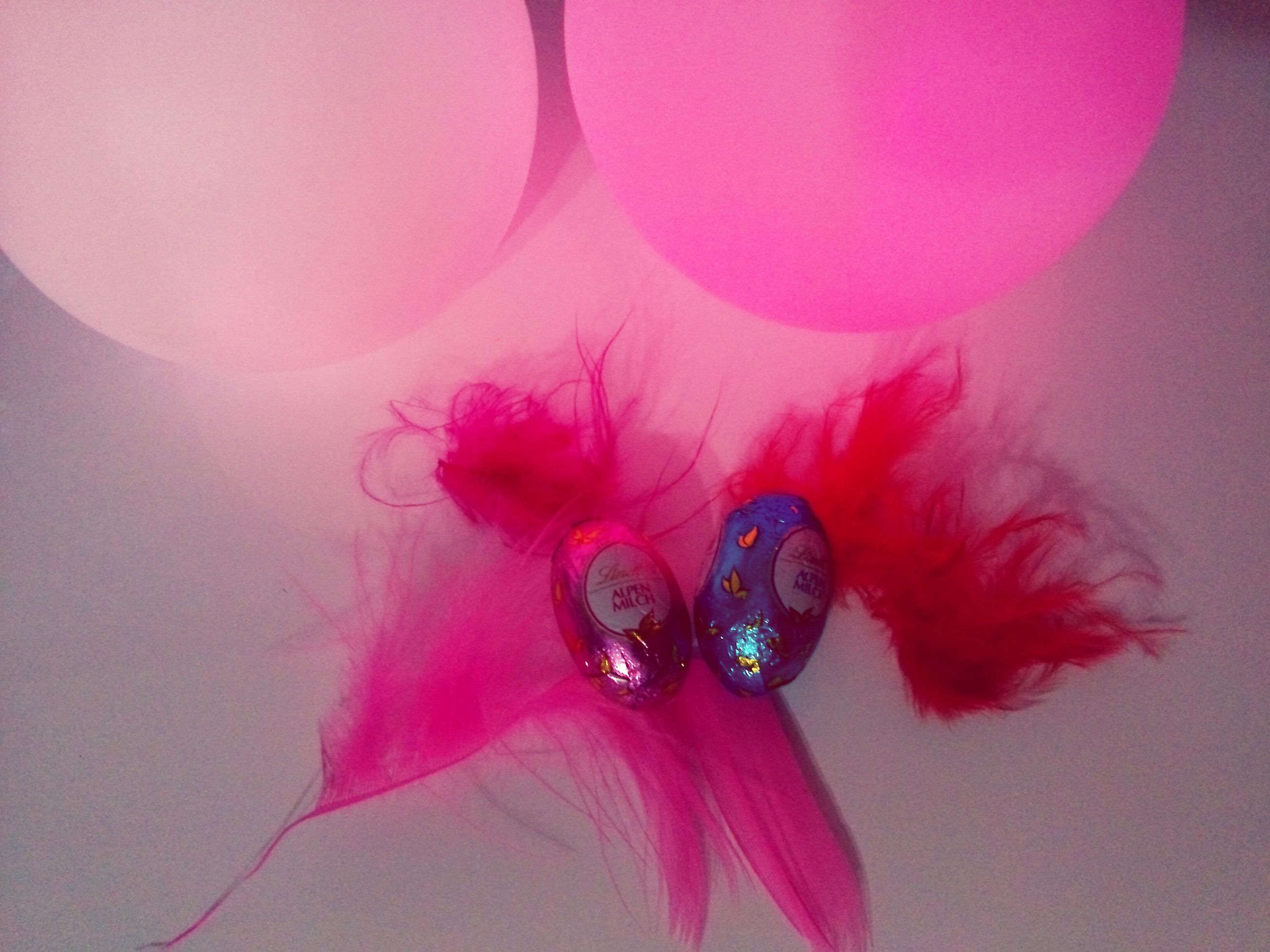 indoors, pink color, close-up, flower, fragility, still life, decoration, studio shot, red, high angle view, multi colored, no people, petal, table, glass - material, transparent, variation, reflection, freshness, pink