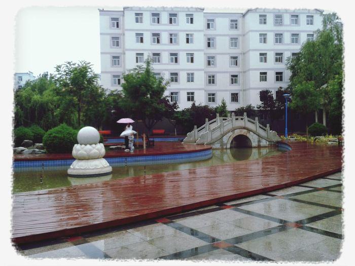 微雨池塘见,好风襟袖知。。。好运气,出来就下雨 First Eyeem Photo