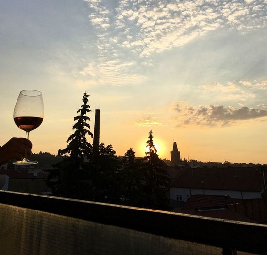 Sunrise Sky Nature Tree Cloud - Sky Glass No People Alcohol Orange Color Drink Wine Wineglass Refreshment City