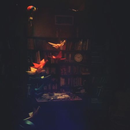 Freedom in many ways Interior Bookshelf Paperbirds