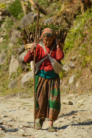 Women in Nepal have the stregnth and fortitude of men.Outdoors One Person People Day Close-up Adult People Of Nepal Travel Destinations Travel Travel Photography People Photography Traditional Clothing Women Of Nepal Culture And Tradition Woman At Work Countryside Tradition Nepal Women Carrying Heavy Loads Women At Work Miles Away The Portraitist - 2017 EyeEm Awards