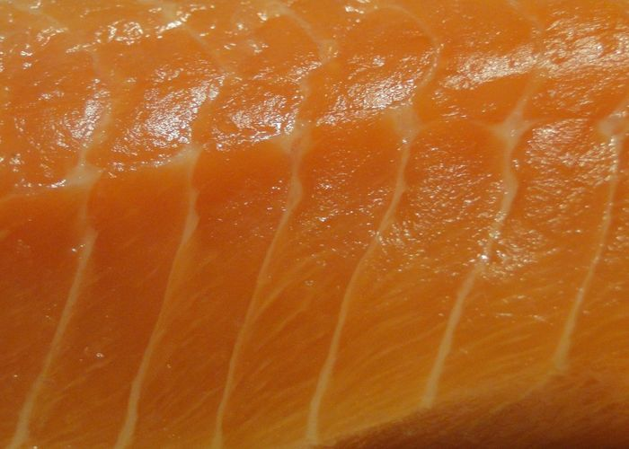 Maximum Closeness SLICE Close-up Healthy Eating No People Food And Drink Natural Pattern Pattern Textured  Salmone Fish