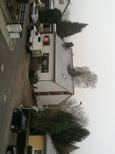 Es ist winter Tree Building Exterior Architecture Built Structure City Day No People Outdoors Sky