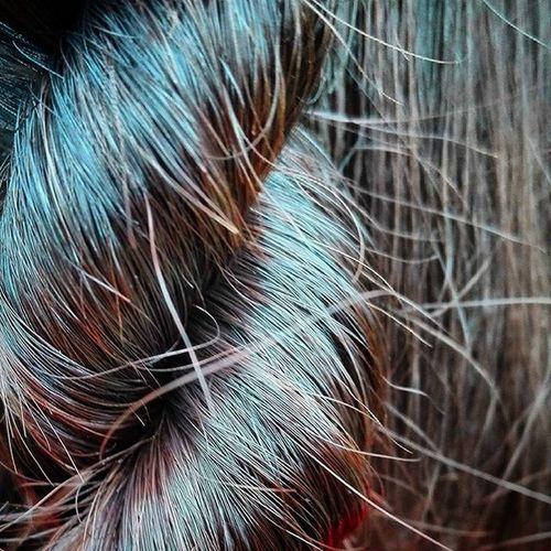 Twistedbraid Braid 9vaga_twisted9 Hairstyle Hair Wmm_brown