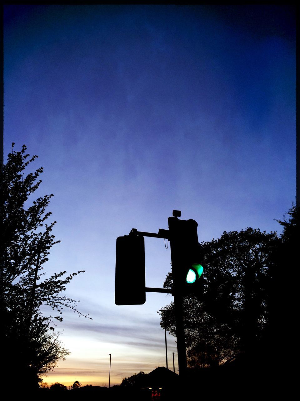 tree, low angle view, blue, traffic light, silhouette, sky, sunset, communication, outdoors, no people, stoplight, transportation, day, road sign, signal, clear sky, nature