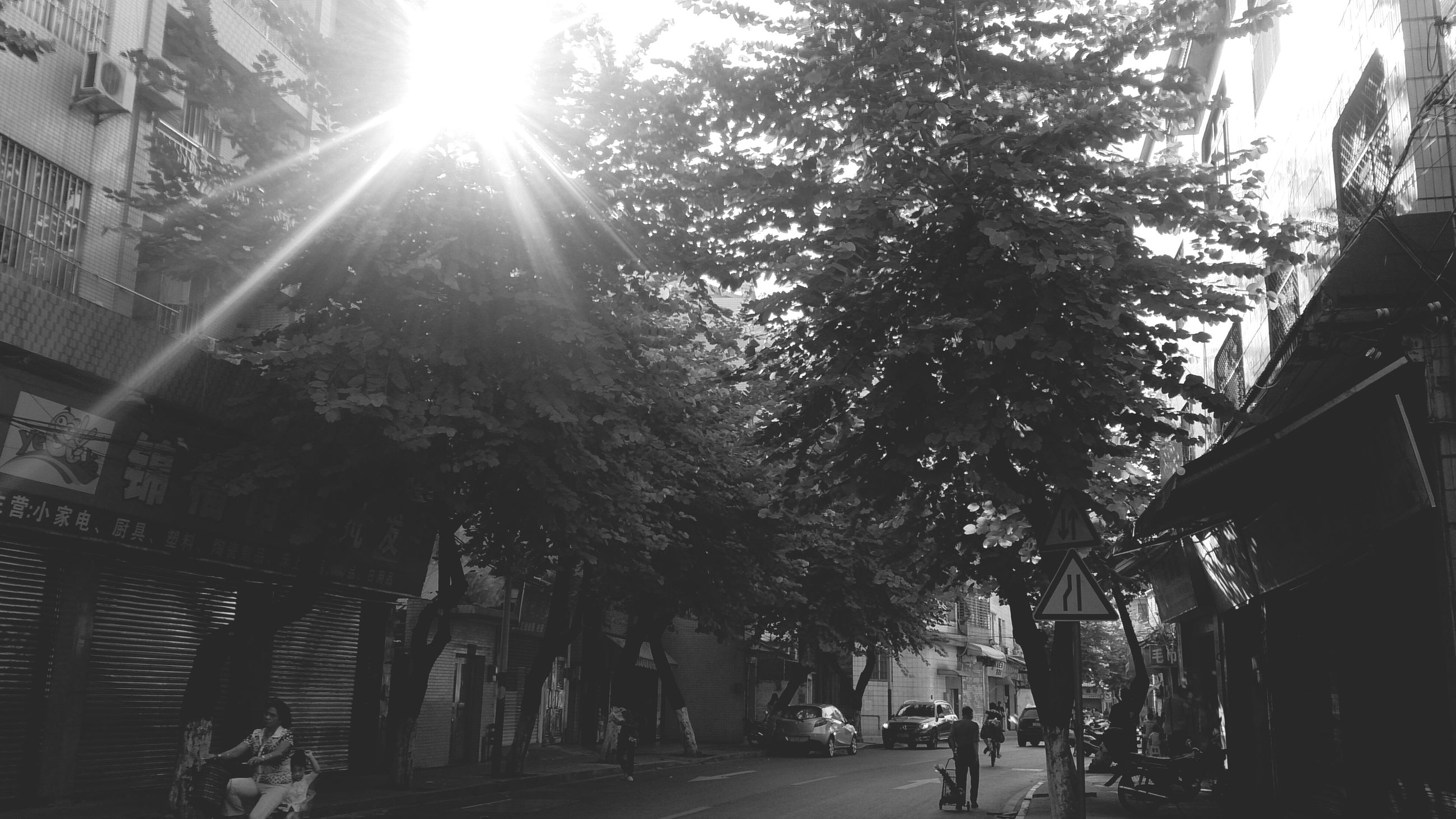 tree, the way forward, built structure, building exterior, architecture, sunlight, street, lifestyles, men, walking, person, city, leisure activity, road, shadow, transportation, footpath, sunbeam, day