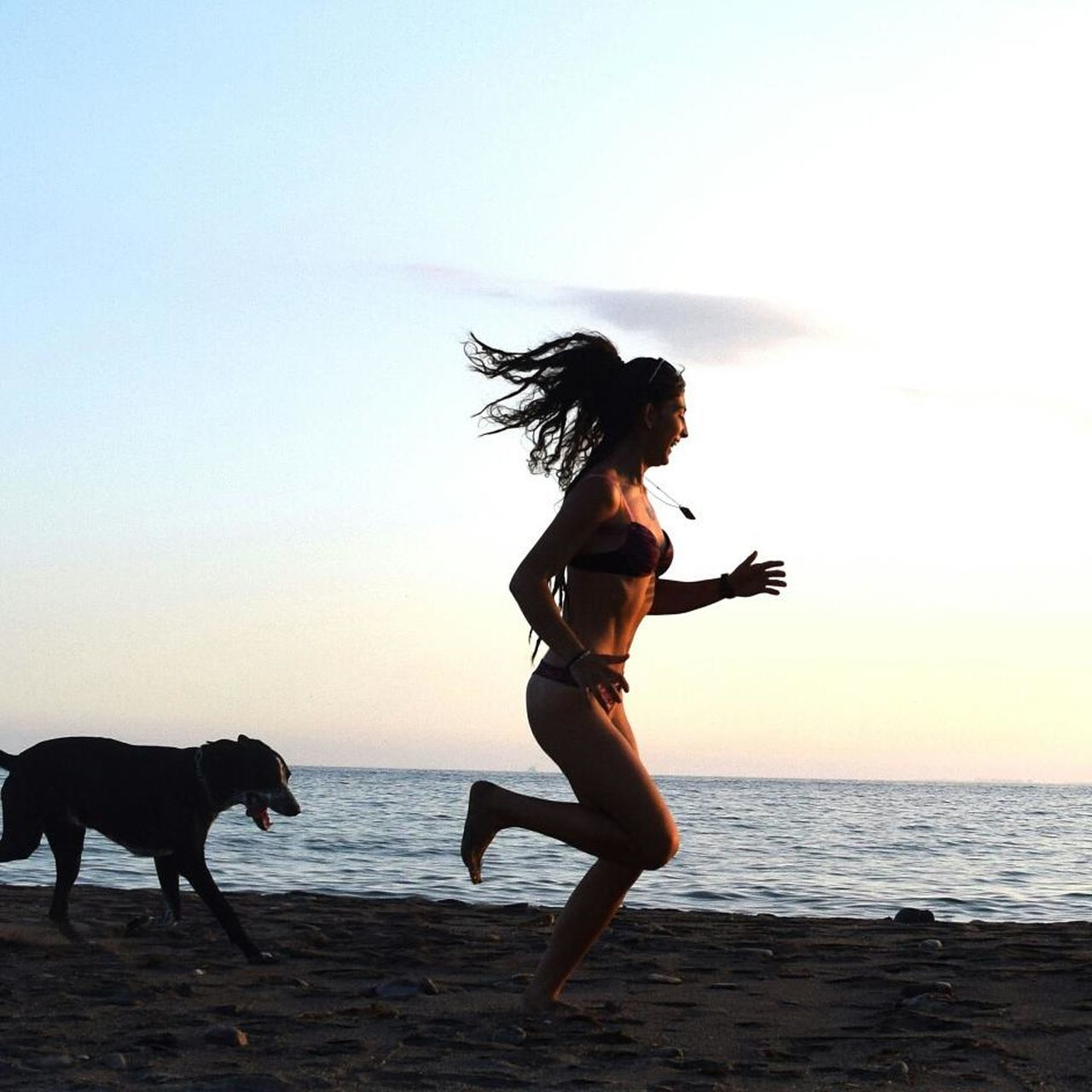sunset, beach, dog, sea, domestic animals, pets, silhouette, one animal, animal themes, nature, real people, full length, horizon over water, lifestyles, sky, mammal, outdoors, standing, side view, scenics, motion, beauty in nature, one person, water, young women, young adult, day, people