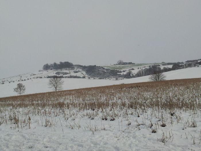 Laverstock No People Salisbury Snow Snow Snow Covered Snowy Days...
