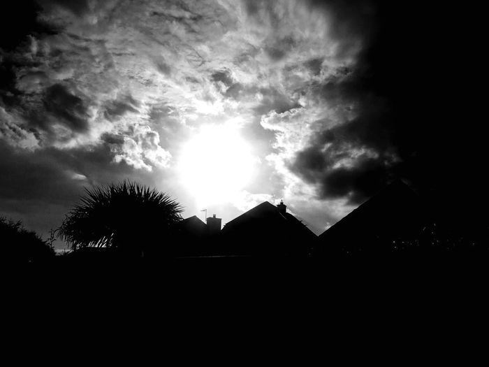 Sunrise Silhouette Black And White Friday