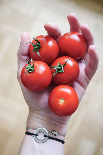 Close-up of hand holding tomatoes