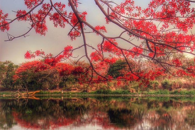 Landscape #Nature #photography Landscape
