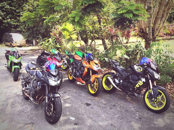 Riding Around with your Squad Retreat Z750  Z750R Z800 Jandabaik