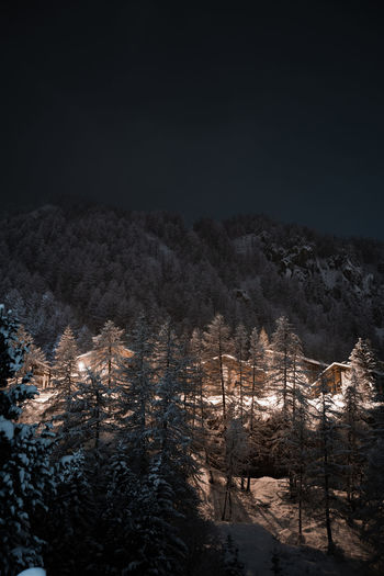 Illuminated trees by snowcapped mountains against sky at night