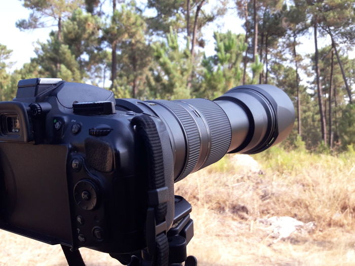 Close-up of camera in forest