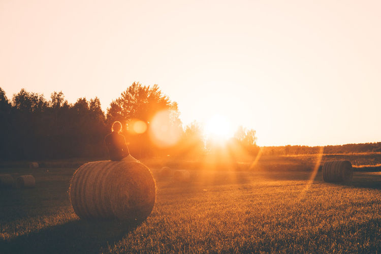 Agriculture Bale  Beauty In Nature Clear Sky Day Field Grass Hay Hay Bale Landscape Nature Outdoors Rural Scene Scenics Silhouette Sky Sunlight Sunset Tranquil Scene Tranquility