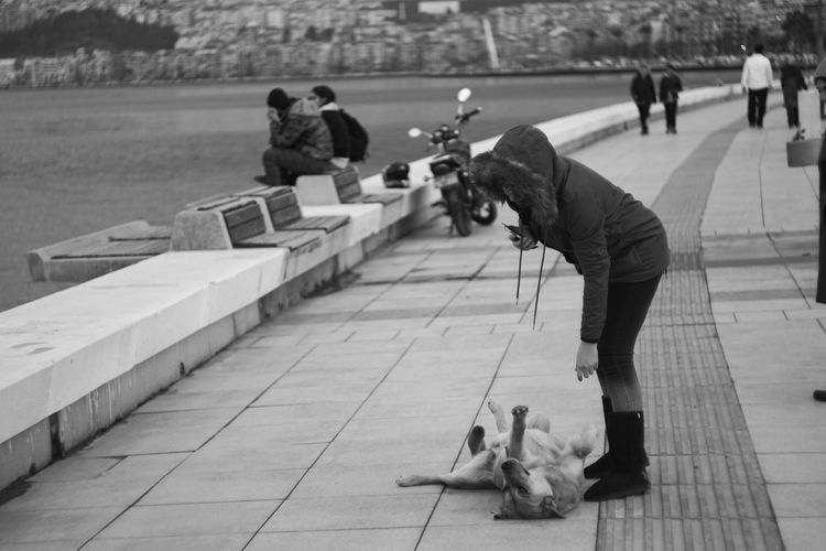 Day Outdoors Adult People Capture The Moment Sony A6000 Helios 44m-6 Helios Streetphotography Legacy Lenses Blackandwhite Dog Love Shoot A Stranger Seaside Pet Portraits