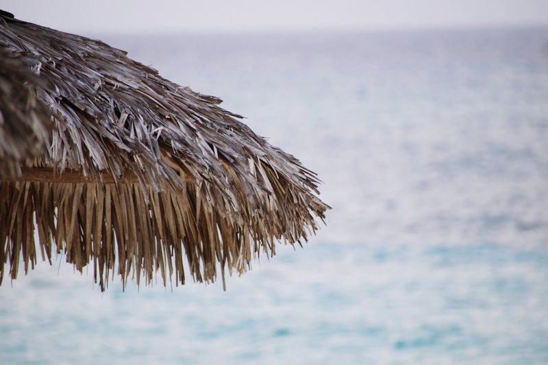Close-up of thatched roof on beach against sky