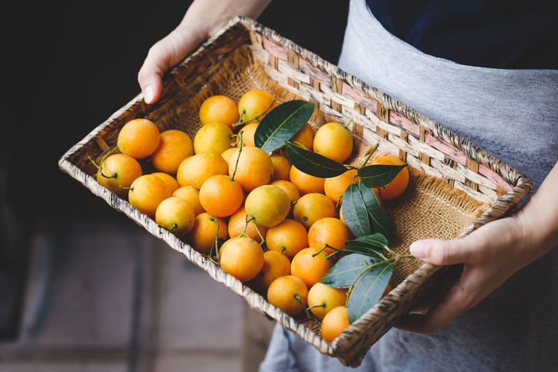 Midsection of person holding fruits in basket