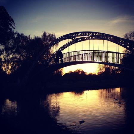 Sunset Bridge Sunset Silhouettes The Illuminator - 2014 EyeEm Awards