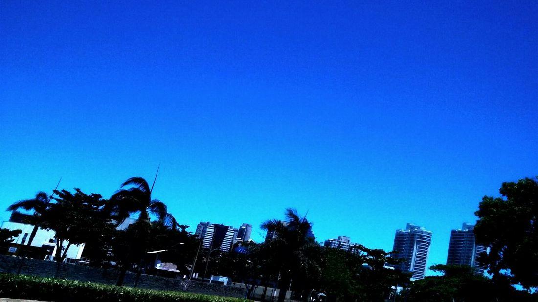 Tão natural como a luz do dia.. CeuAzul Sun ☀ Perfeição Nature Vitoria Es Photography