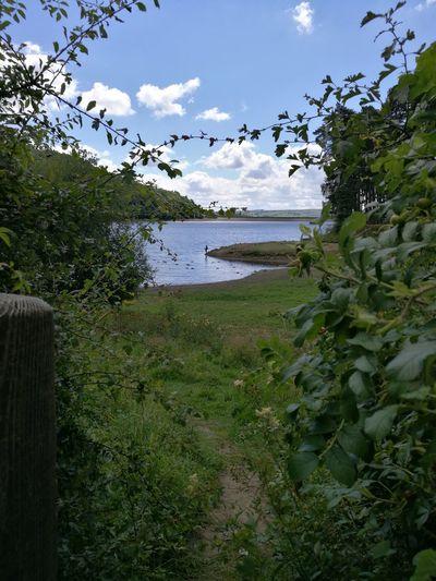 Tunstall, Reservoir, Fly Fishing