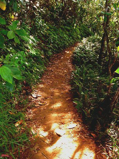 Followme Dream Destination EyeEm Nature Lover Just Breathe