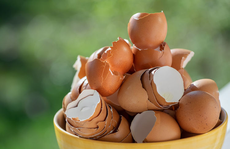 Egg Food And Drink Food Freshness Brown Close-up Focus On Foreground Fragility No People Vulnerability  Eggshell Nature Shell Raw Food Still Life Broken Wellbeing Healthy Eating Container Day